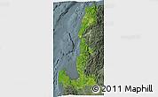 Satellite 3D Map of Region 1, semi-desaturated