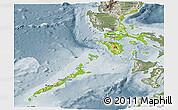 Physical Panoramic Map of Region 4, semi-desaturated