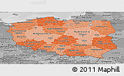 Political Shades Panoramic Map of Poland, desaturated