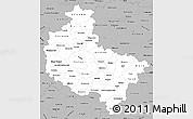 Gray Simple Map of Wielkopolskie