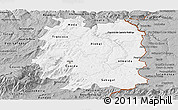 Gray Panoramic Map of Beira Interior Norte