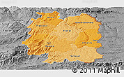 Political Shades Panoramic Map of Beira Interior Norte, desaturated