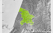 Physical Map of Leiria, desaturated