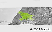 Physical Panoramic Map of Leiria, desaturated