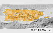 Political Shades 3D Map of Puerto Rico, desaturated
