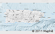 Gray Map of Puerto Rico