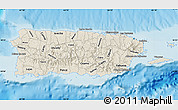 Shaded Relief Map of Puerto Rico