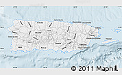 Silver Style Map of Puerto Rico