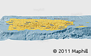 Savanna Style Panoramic Map of Puerto Rico