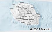 Gray 3D Map of Reunion