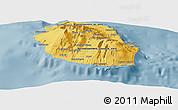 Savanna Style Panoramic Map of Reunion