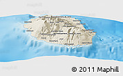 Shaded Relief Panoramic Map of Reunion