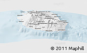 Silver Style Panoramic Map of Reunion