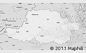 Silver Style Map of Arad