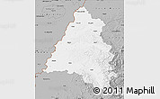 Gray Map of Bihor