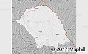 Gray Map of Botosani