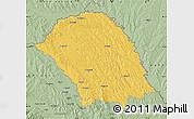 Savanna Style Map of Botosani