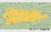 Savanna Style Map of Calarasi