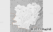 Gray Map of Caras-Severin