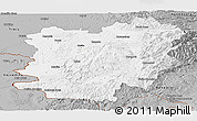 Gray Panoramic Map of Caras-Severin