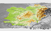 Physical Panoramic Map of Caras-Severin, desaturated