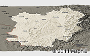 Shaded Relief Panoramic Map of Caras-Severin, darken