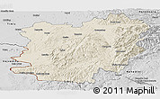 Shaded Relief Panoramic Map of Caras-Severin, desaturated