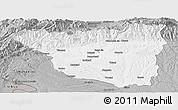 Gray Panoramic Map of Gorj