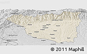 Shaded Relief Panoramic Map of Gorj, desaturated