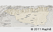 Shaded Relief Panoramic Map of Gorj, semi-desaturated