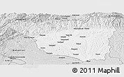 Silver Style Panoramic Map of Gorj
