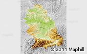 Physical Map of Hunedoara, lighten, desaturated
