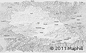 Silver Style Panoramic Map of Hunedoara