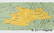 Savanna Style Map of Maramures