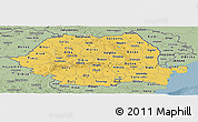 Savanna Style Panoramic Map of Romania