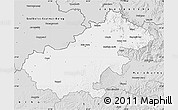 Silver Style Map of Satu Mare