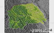 Satellite Map of Suceava, desaturated