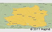 Savanna Style Panoramic Map of Teleorman