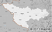 Gray Map of Timis
