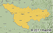 Savanna Style Map of Timis