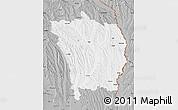 Gray Map of Vaslui
