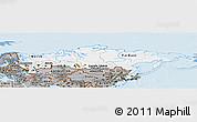 Gray Panoramic Map of Russia