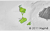 Physical 3D Map of Saint Pierre and Miquelon, desaturated