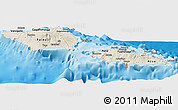 Shaded Relief Panoramic Map of Samoa