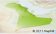 Physical Panoramic Map of Eastern Province, lighten