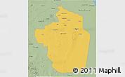 Savanna Style 3D Map of Riyad