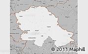 Gray Map of Vojvodina