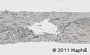 Gray Panoramic Map of Kocevje