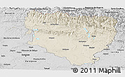 Shaded Relief Panoramic Map of Huesca, desaturated