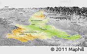Physical Panoramic Map of Zaragoza, desaturated